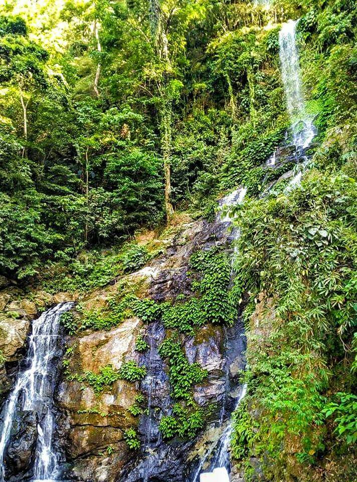 Tamaraw Falls - Mindoro Travel Guide} Photo By: Tara Sa Mindoro