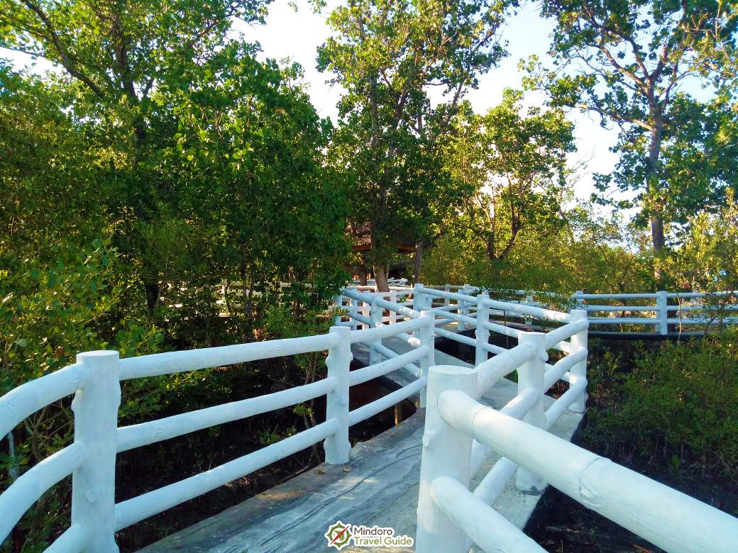 Mindoro Travel Guide: Anilao Eco Village 3